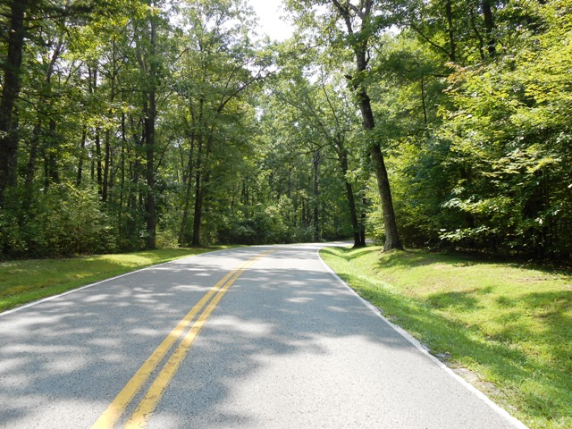Heading into Fall Creek Falls State Park.