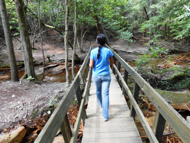 Pamo on the second bridge to Fall Creek Falls.