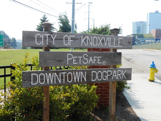 The Dog Park just down from the Old City.