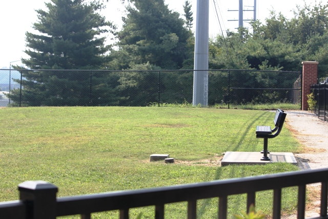 The park is completely fenced in to keep dogs safe.