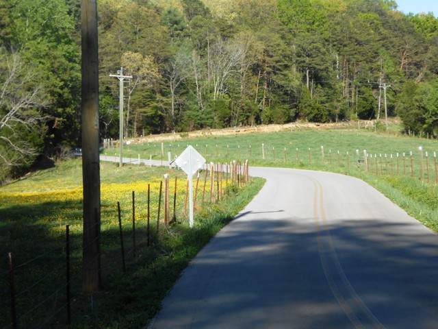 The E. Coast Tellico Parkway is another beautiful East TN road.