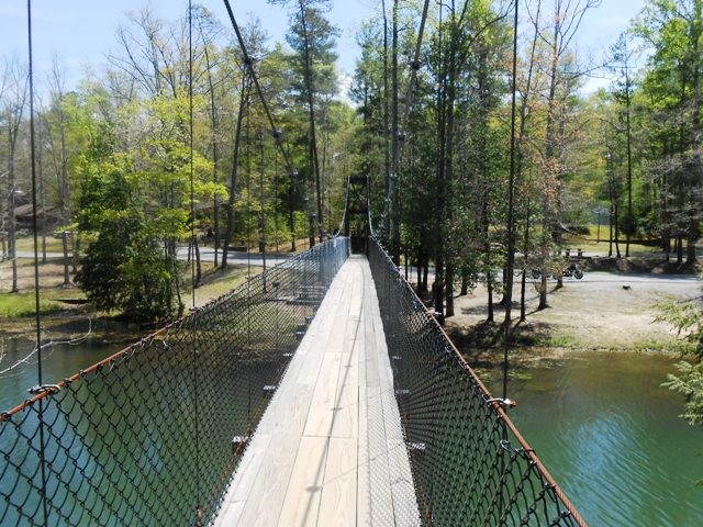 Swinging bridge in Pickett State Park.