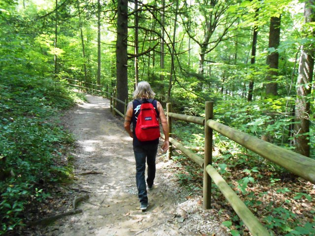 We continued the hike to Burgess Falls.