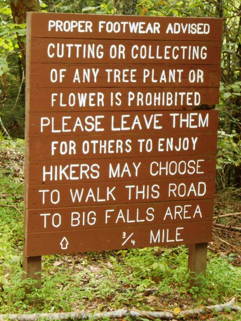 The service road is just off the parking lot. It's an alternative to the hiking trail.