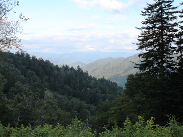 View from Newfound Gap.