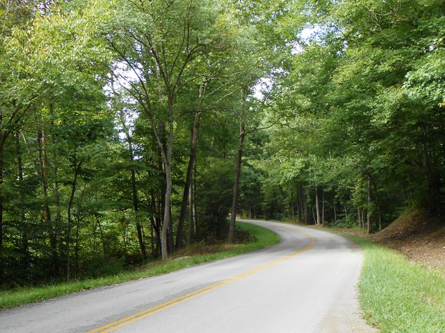Scenic back road just beyond the Dr. Thomas Walker Historic Site.