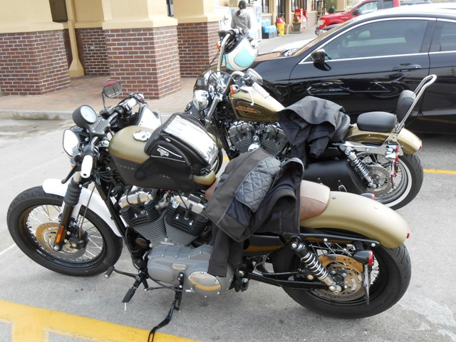We rode our Sportster's today.