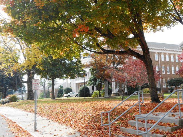 Carson Newman has a beautiful campus.
