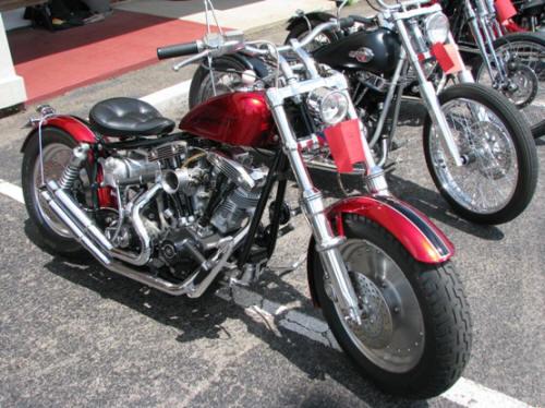 1981 HD Shovelhead