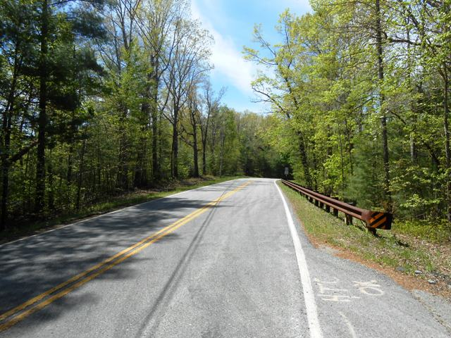The road heading into Big South Fork.