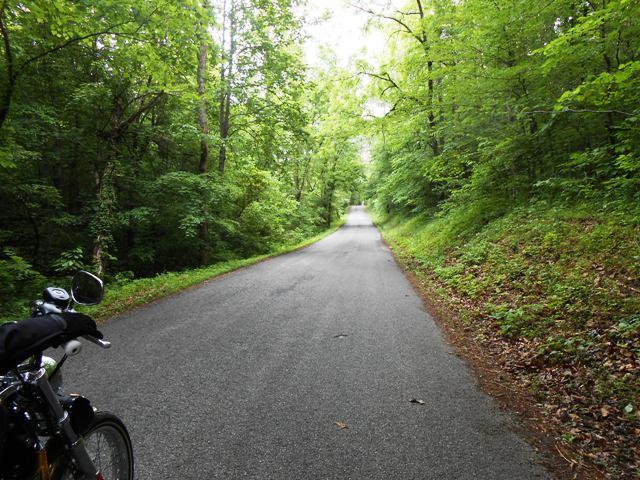Black Fox Road
