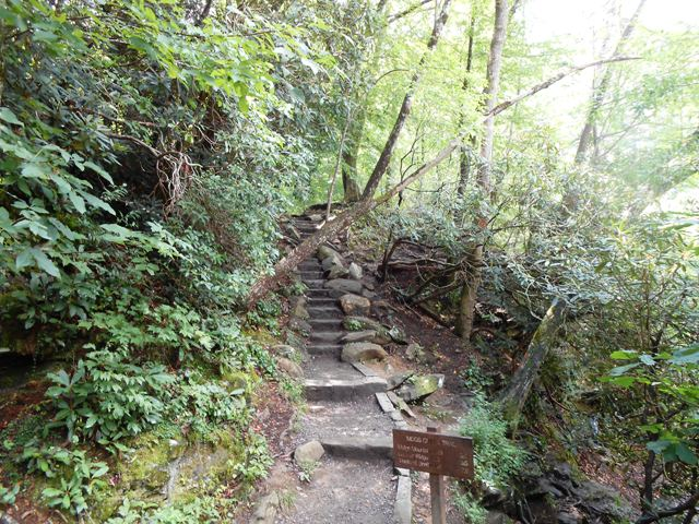Hiking trails can be accessed from the Sinks too.
