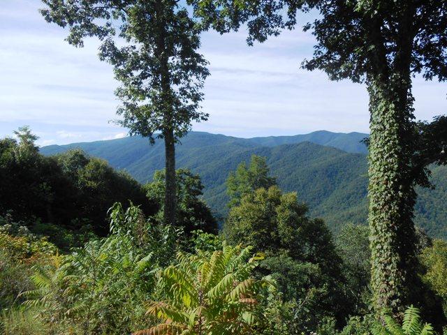 View from Cherohala Skyway.