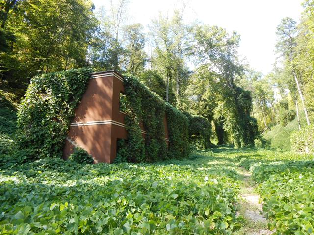 Hollowed out structures among the kudzu.