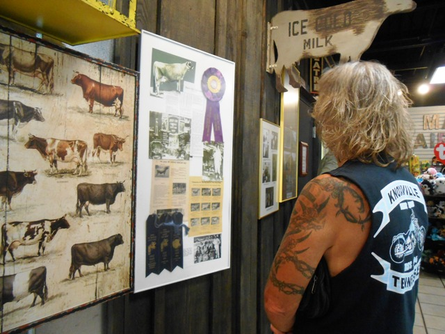 The Visitor Center features lots of history about Mayfield Dairy and facts about dairy cows.