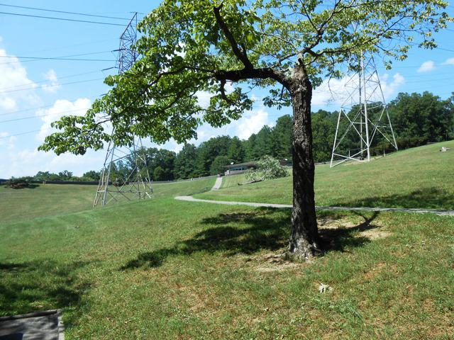 A nice picnic area below the East Visitor Center.